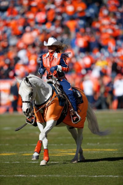 Mascot Thunder, ridden by Ann Judge-Wegener